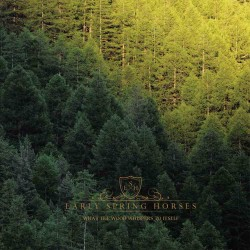 Early Spring Horses - What the wood whispers to itself - CD Album